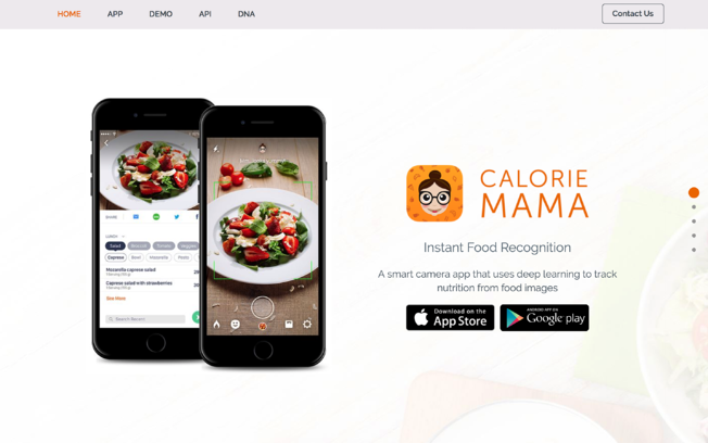image recognition app for calorie counting