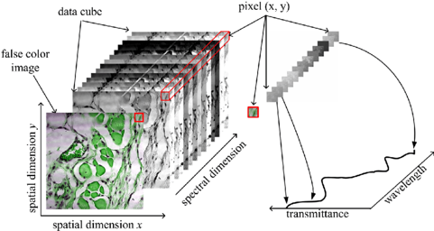 Data cube with spectral and spatial dimensions