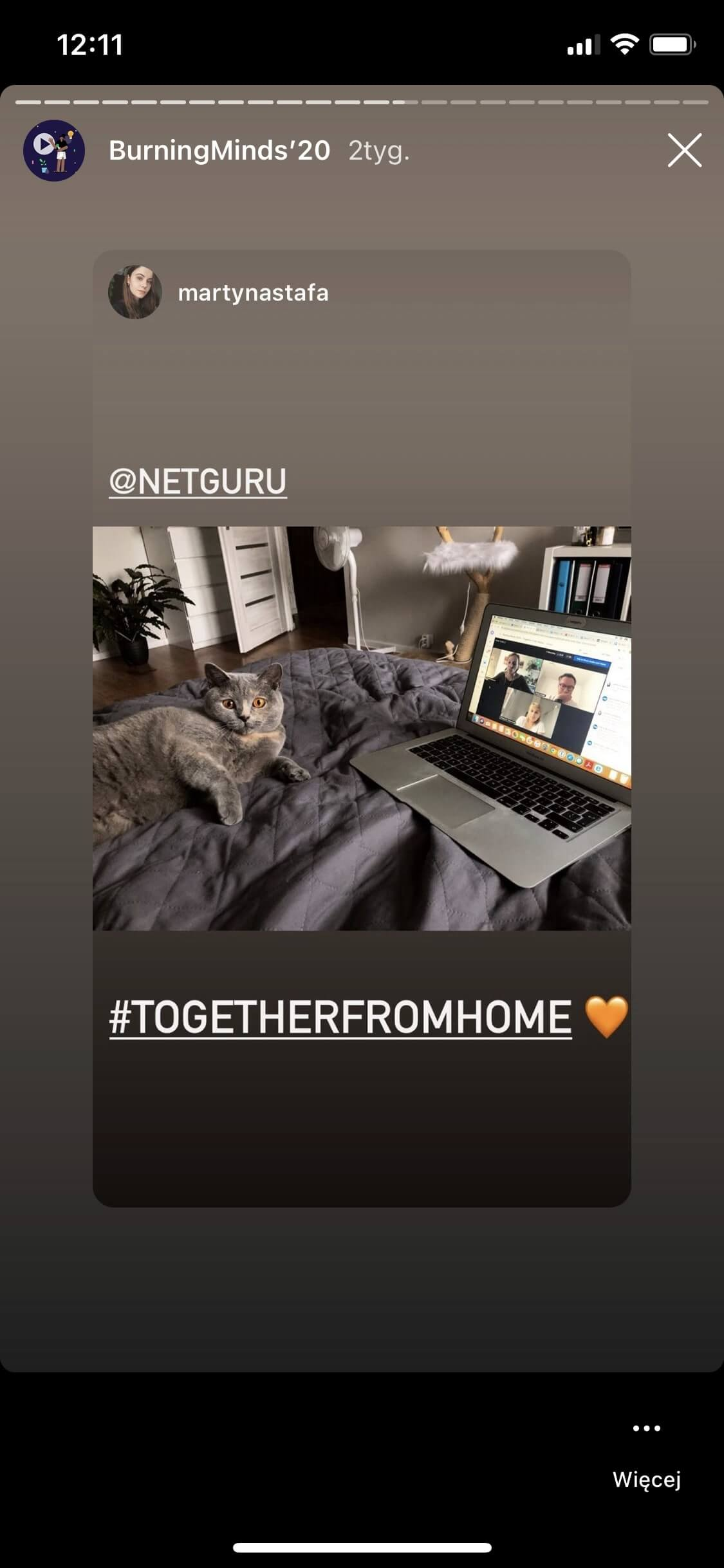 Open notebook and a cat