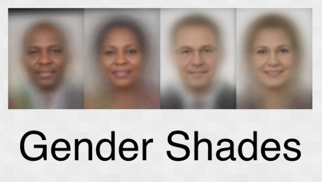 gender_shades-315047-edited