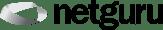 netguru_logo_white_background.png