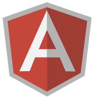 Get your own Ruby on Rails and Angular solution
